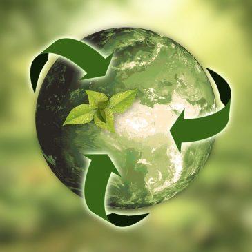 """Światowy Dzień Ziemi 2021 pod hasłem """"Przywróćmy naszą Ziemię"""""""